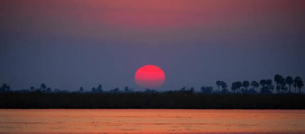 Sunset In Botswana Poster
