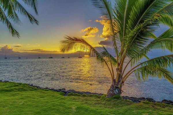 Sunset In Tahiti French Polynesia Poster