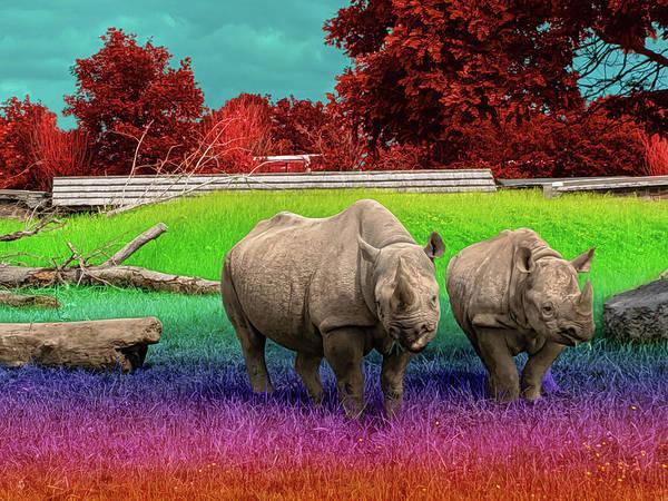 Taste The Rhin-bow Poster