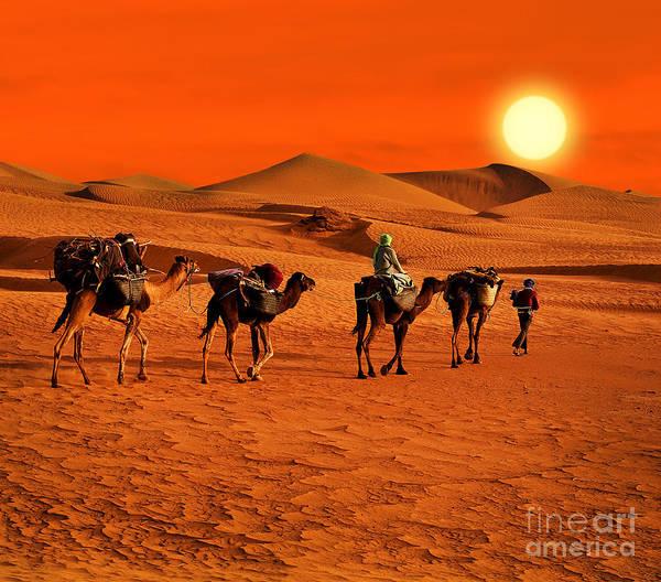 The Berbesky Tribe Passes The Desert In Poster