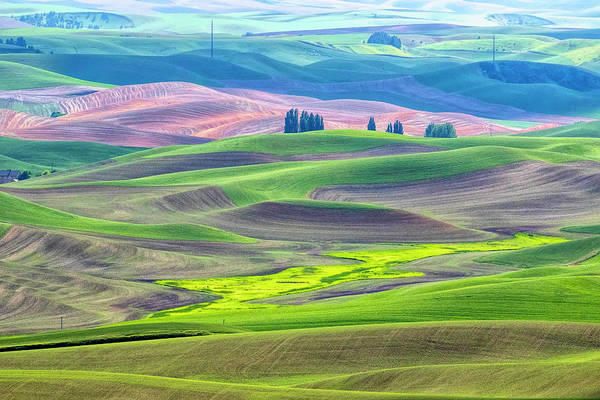 The Color Palette Of The Palouse Poster