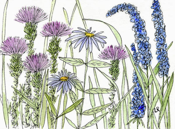 Thistle Asters Blue Flower Watercolor Wildflower Poster
