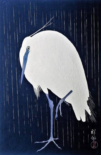 Top Quality Art - Rains White Egret Poster