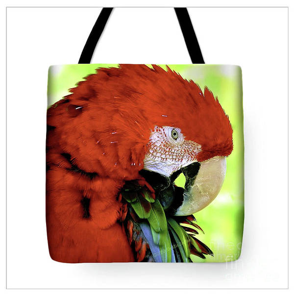Tote Bags Poster