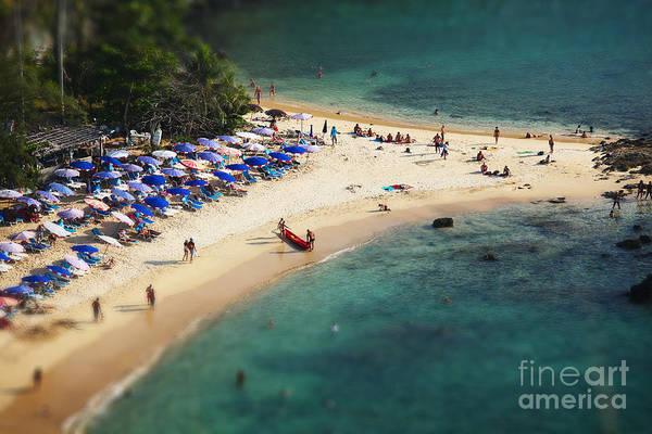 Tropical Sandy Beach And Calm Lagoon Poster