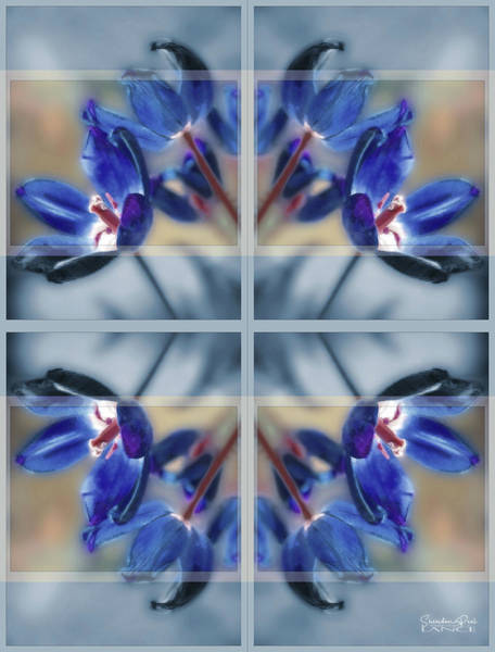 Tulips Of Stained Glass Poster