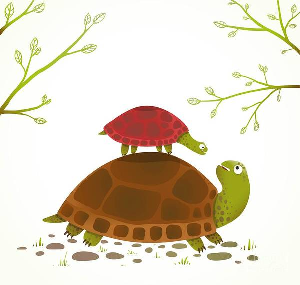 Turtle Mother And Baby Childish Animal Poster