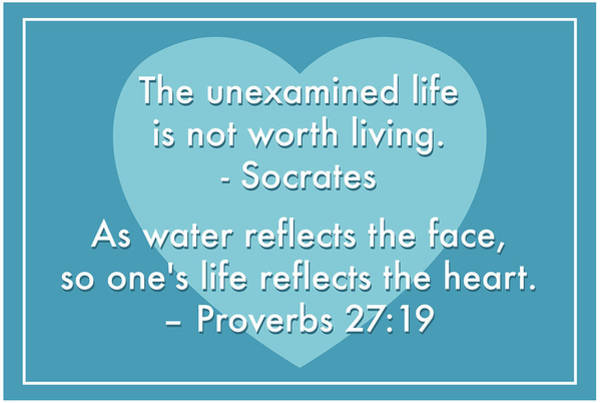 Unexamined Life Poster