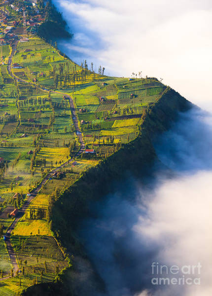 Village Near  Cliff At Bromo Volcano In Poster