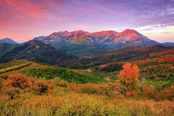 Wasatch Back Autumn Morning Poster