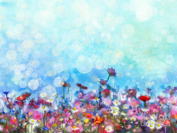 Watercolor Painting Purple Cosmos Poster