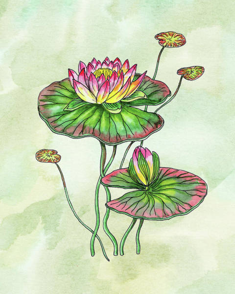 Watercolor Water Lily Botanical Flower Poster