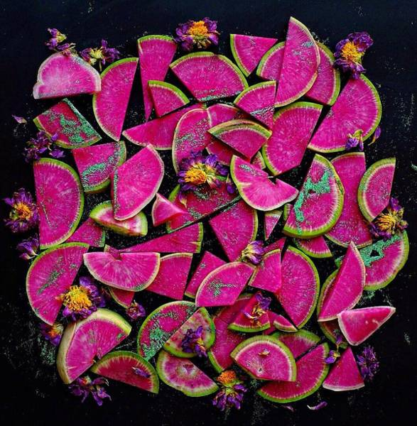 Watermelon Radish Edges Poster