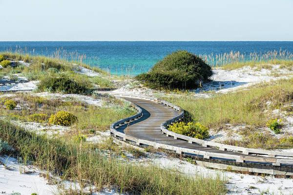 Watersound Beach Dune Boardwalk Poster