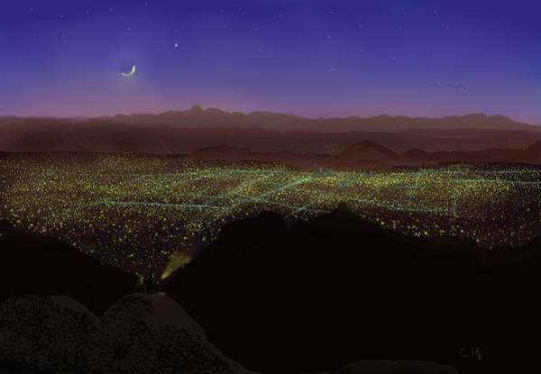 When Tucson's Lights Flicker On Poster