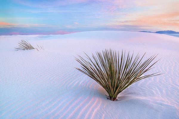 White Dunes, White Sands National Monument Poster