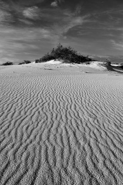 White Sands New Mexico Waves In Black And White Poster
