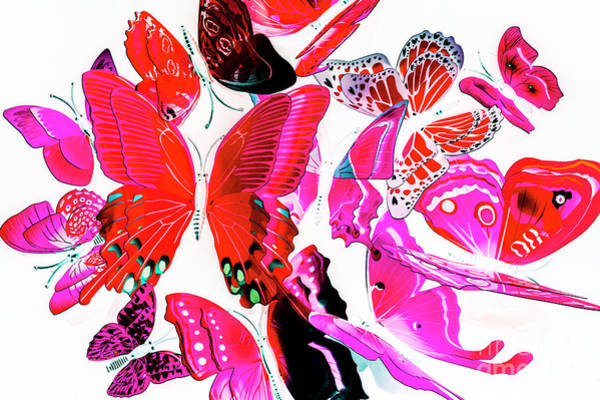 Wild Vibrancy Poster