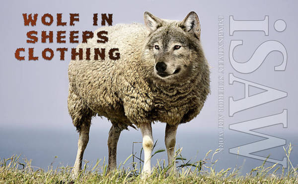 Wolf In Sheeps Clothing Poster