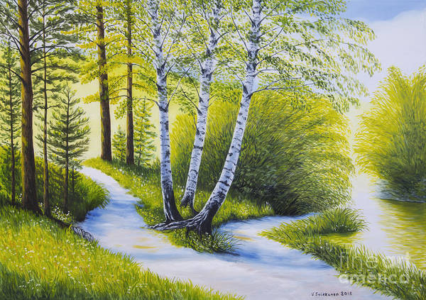 Spring Birch Trees Paintings Page 2 Of 12 Fine Art America