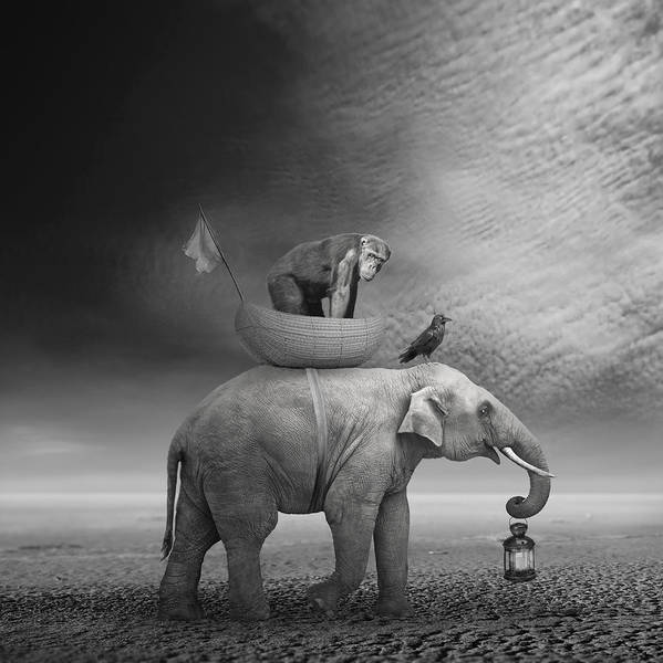 Manipulation Wall Art - Digital Art - ... .. by Beata Bieniak