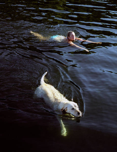 Wall Art - Photograph -  A Guest And The Resort Labrador Odie by Matthew Wakem