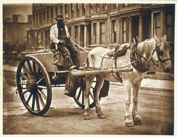 Wall Art - Photograph -  A London Water Seller In His  Cart by Mary Evans Picture Library