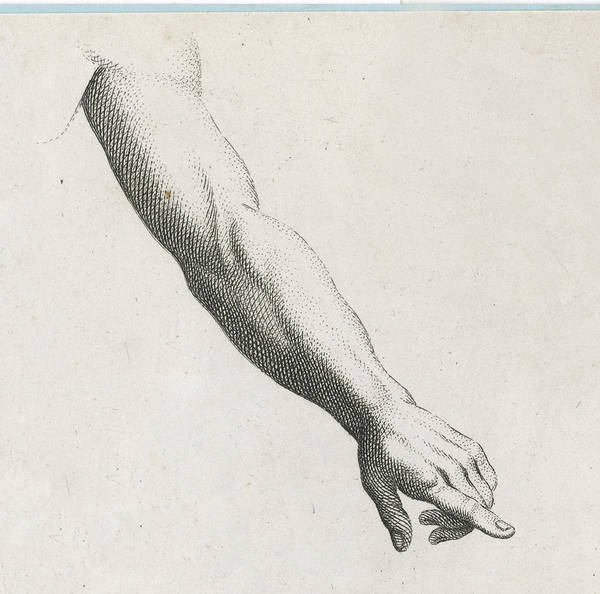 Wall Art - Drawing -  A Pointing Hand by Mary Evans Picture Library