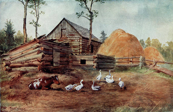 Homestead Drawing -  A Settler's Farmyard  At Muskoka by Mary Evans Picture Library