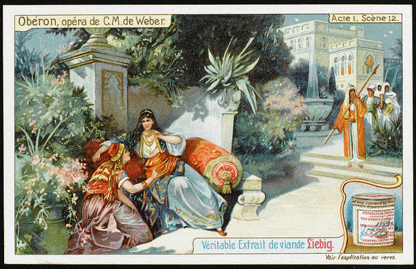 Liebig Wall Art - Drawing -  Act One, Scene Twelve  In The  Garden by Mary Evans Picture Library