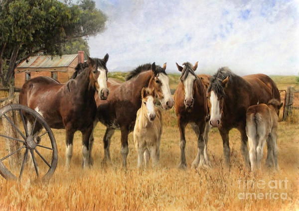 Wagon Digital Art -  Always And Forever by Trudi Simmonds