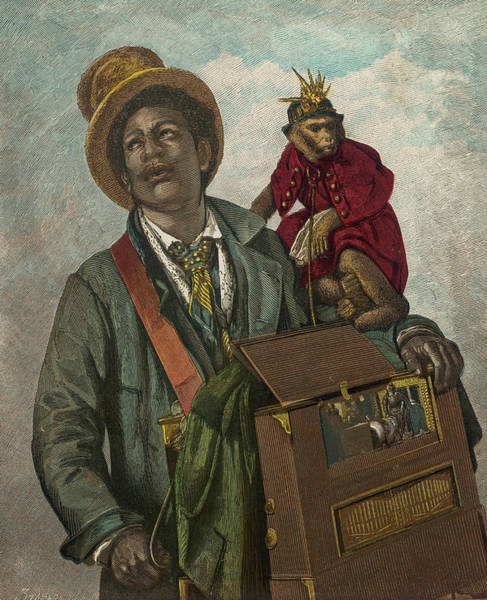 Wall Art - Drawing -  An Organ-grinder  And His Monkey by Mary Evans Picture Library