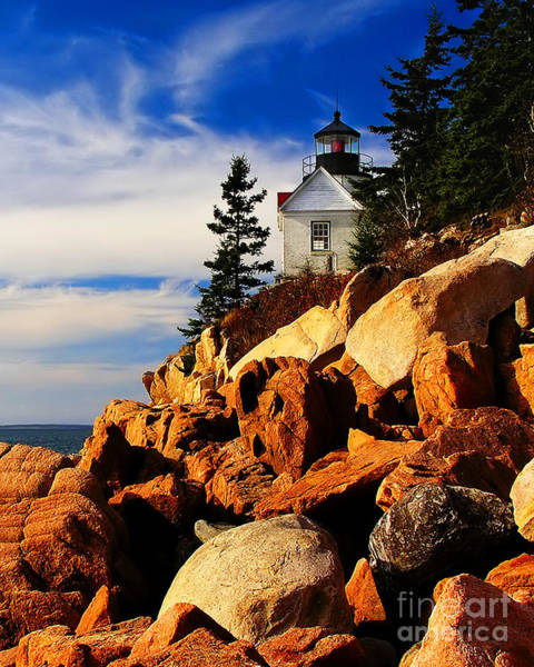 Photograph -  Bass Harbor Lighthouse Maine by Nick Zelinsky