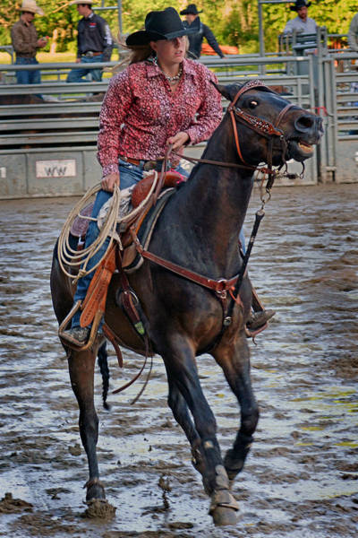Prca Wall Art - Photograph -  Breaking Of The String by Gary Keesler
