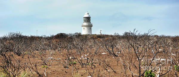 Photograph -  Cape Naturaliste Lighthouse by Yew Kwang