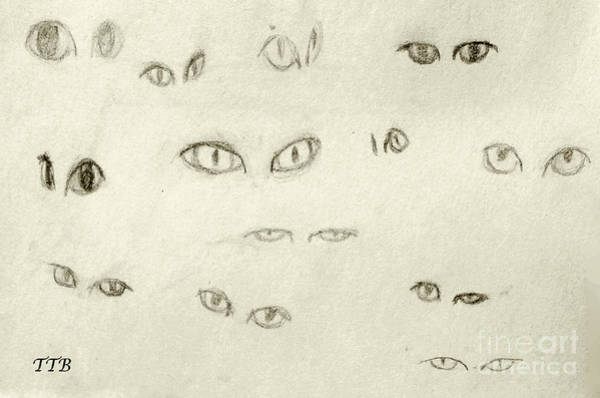 Drawing -  Cat Eyes - 1 by Art By - Ti   Tolpo Bader