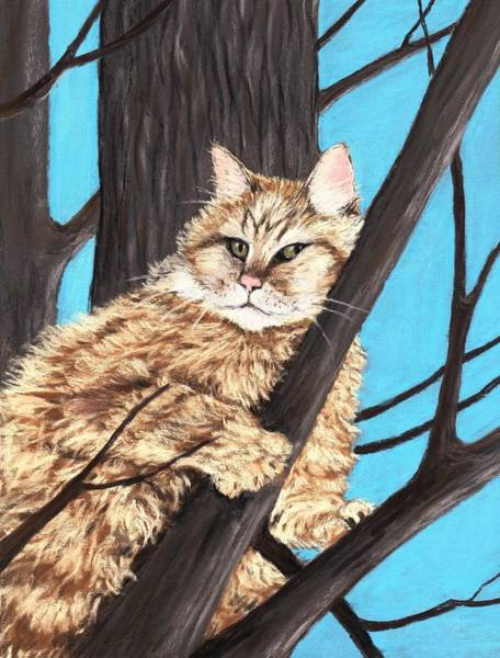 Wall Art - Painting -  Cat On A Tree by Anastasiya Malakhova