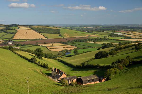 Photograph -  Exe Valley In Devon by Pete Hemington