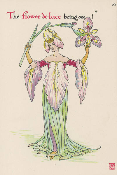 Wall Art - Drawing -  Flower-de-luce Personified by Mary Evans Picture Library
