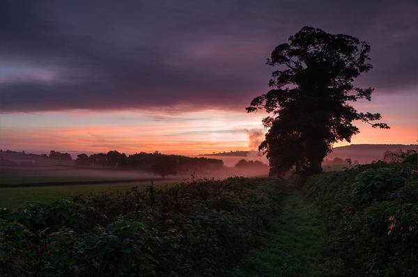 Photograph -  Hele Payne Farm At Dawn by Pete Hemington