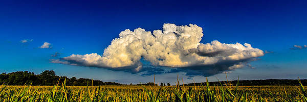 Photograph -  I Really Don't Know Clouds At All by Randy Scherkenbach