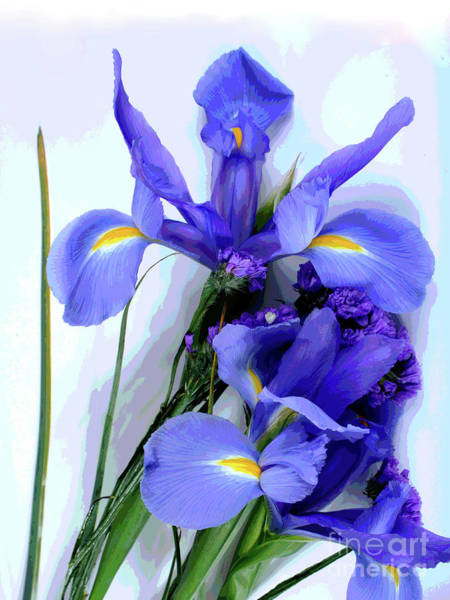 Photograph -  Iris -- Pretty In Purple-1 by Larry Oskin