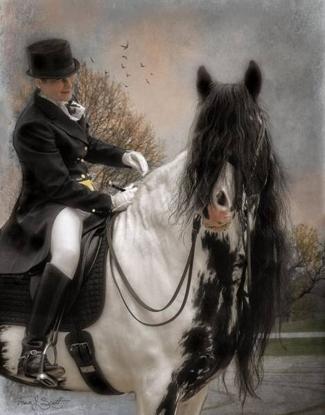 Wall Art - Mixed Media - Drum Horse Dressage by Fran J Scott