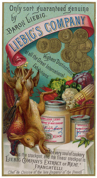 Liebig Wall Art - Drawing -  Liebig's Meat Extract The Finest by Mary Evans Picture Library