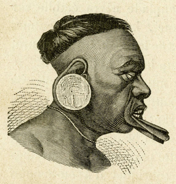 Lip Piercing Wall Art - Drawing -  Lip-ring And Earring Of South by Mary Evans Picture Library