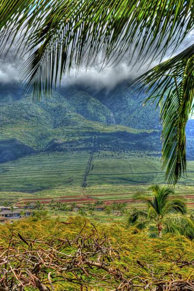 Photograph -  Maui Foot Hills by Arthur Fix