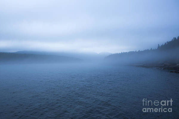 Wall Art - Photograph -  Mist In Otter Cove by Diane Diederich