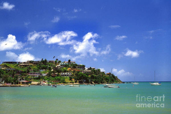 Photograph -  Naguabo Shoreline by Thomas R Fletcher