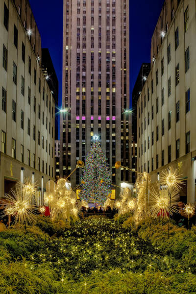 Photograph -  Nyc Rockefeller Center Christmas Tree by Susan Candelario
