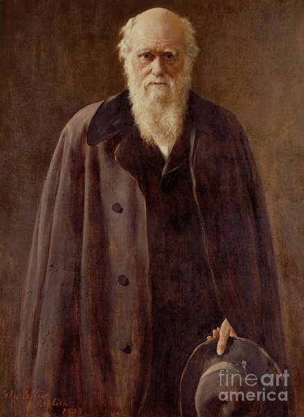 Serious Painting -  Portrait Of Charles Darwin by John Collier